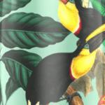 Tucani verde